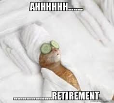 Retirement Meme - ahhhhhh retirement pered cat