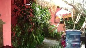 flashbacks hotel sanur bali indonesia ericenthailande com