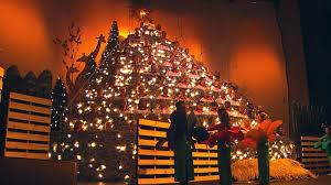 singing christmas tree fishwolfeboro