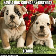 Cute Birthday Meme - birthday