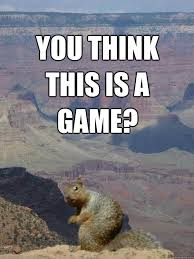 Squirrel Meme - you think this is a game serious squirrel quickmeme