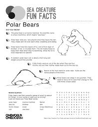 polar bear one world one ocean