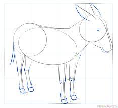 draw donkey step step drawing tutorials