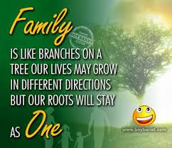 wishes for family day happy family day happy family
