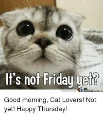 Good Morning Cat Meme - it s not friday yetb mumecenter memecenter com good morning cat