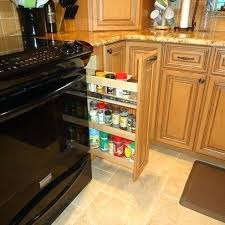 Omega Kitchen Cabinets Reviews Dynasty Omega Cherry Cabinetry Traditional Kitchen Cabinet
