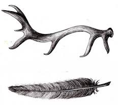 feather and deer antler tattoo design