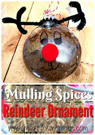easy mulling spices reindeer ornament gift idea mainly