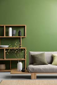 living green living room feature wall 750x1125 living room color