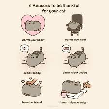 6 reasons to be thankful for your cat happy thanksgiving