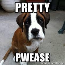 Sad Pug Meme - sad pug meme generator alpha beta demo