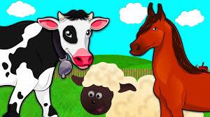 simple learning animals on the farm cow horse sheep preschool