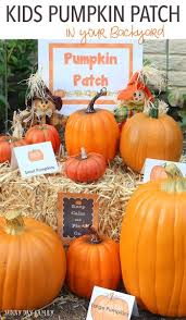 156 best preschool pumpkin crafts books and printables images on