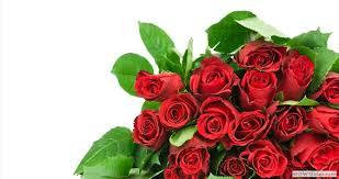 flower delivery washington dc same day flower delivery washington dc 240 724 8594