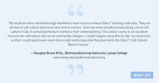 cell culture basics u2014 gibco thermo fisher scientific