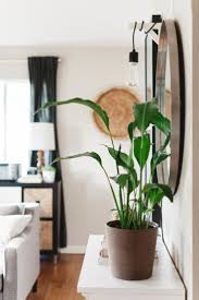 164 best entryways images on pinterest live entryway ideas and