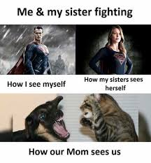 Memes About Sisters - dopl3r com memes me my sister fighting how i see myself how