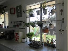 window herb harden hang your herb garden in front of your window offbeat home life