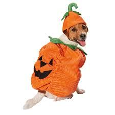 Cheap Dog Costumes Halloween Pumpkin Costume Earn 6 Cashback