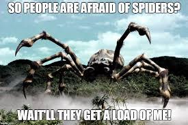 Afraid Of Spiders Meme - kumonga imgflip