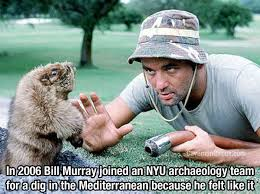 Bill Murray Memes - 9 stories that prove bill murray really is the most interesting