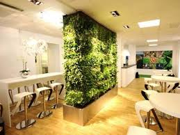plant and furniture for living room divider