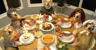 weird thanksgiving food these dogs celebrating thanksgiving will leave you feeling warm