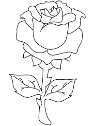 beautiful decoration pictures of roses to color flower page