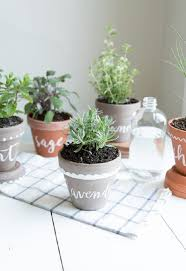 Herb Garden Pot Ideas Accessories 10 Cheap Diy Indoor Herb Containers Diy Herb Garden