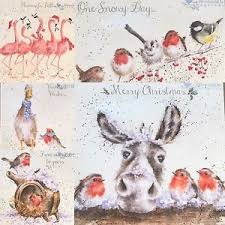 wrendale design single christmas cards donkey robin flamingo
