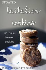 where to buy lactation cookies best 25 lactation no bake cookies ideas on healthy