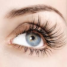 Does Vaseline Help Eyelashes Grow Ways To Make Eyelashes Grow Back Premiumrxdrugs