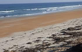 19 briggs dr for sale ormond beach fl trulia
