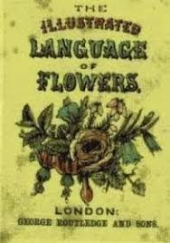The Language Of Flowers Vermont Dead Line Tussie Mussies And The Language Of Flowers
