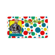 bluetick coonhound nz custom bluetick stickers zazzle co nz
