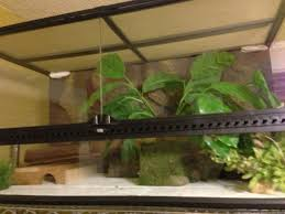 Seeking Lizard Gorgeous Update Reptile Cage Options Still Seeking Perfection