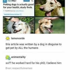 Doge Meme Tumblr - images about dogememes4u tag on instagram