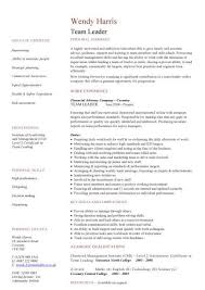 Sample Resume Manager by Management Cv Template Managers Jobs Director Project