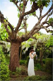 Wedding Trees St Emilion Wedding In 3 Weeks