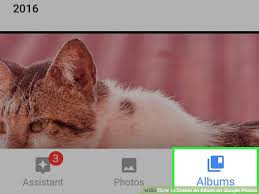 Pet Photo Albums 4 Ways To Create An Album On Google Photos Wikihow