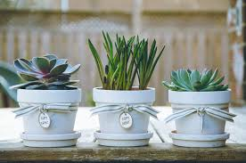 personalized flower pot shabby chic personalized flowerpots personally andrea shabby
