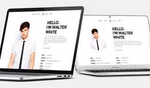 resume portfolio template 50 best html resume cv vcard templates 2017 freshdesignweb