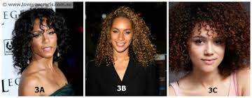 Hair Types by Black Hair Types Type 3 And Type 4 What S Yours