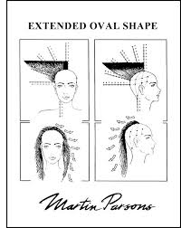 diagram of wedge haircut 16 best hair diagram images on pinterest hair cut braids and