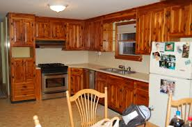 Cost To Paint Kitchen Cabinets Refacing Kitchen Cabinets Before And After Photos All Home