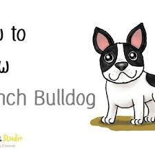 bulldog head sketches how to draw a french litle pups