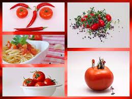 plante cuisine decoration images gratuites fruit décoration plat aliments