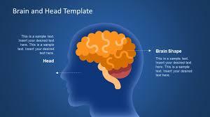 templates for powerpoint brain human brain powerpoint templates