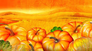 halloween colored background wallpaper ee8811 color wallpapers flowers nature flower wallpaper