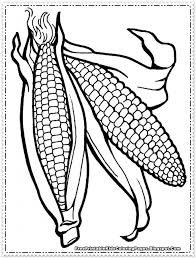 ear of corn coloring page aecost net aecost net